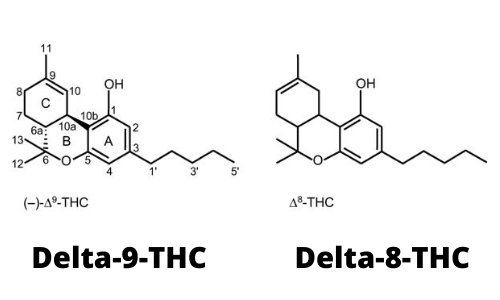What is the difference between Delta-9-THC and Delta-8-THC?